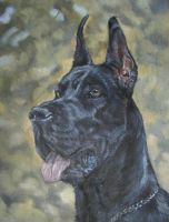 Great Dane by Katie-Z