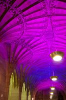 Interior of Wills Memorial 2 by missionverdana