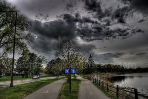 Choose your path by chriskronen