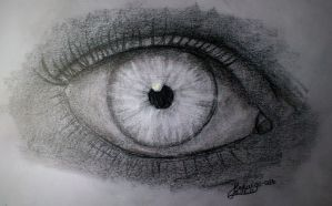 Another Eye (Day 130) by Hedwigs-art