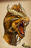 Furious Golden Dragon by GoldenDraco