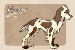 Faber ref beta by Bonday
