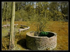 Old Pit by maurice
