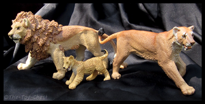 Safari Ltd. Vanishing Wild - Lion Family by The-Toy-Chest