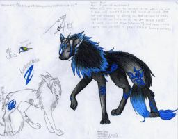 New --Ref Sheet by Lanayru-Wolf