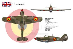 Hurricane Belgium 3-View by WS-Clave