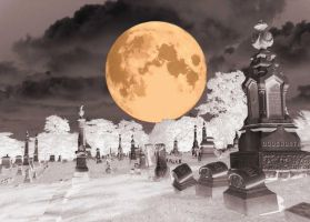 grave yard by whitetrash09