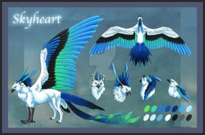 Skyheart Reference Sheet by Araless