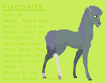 Pincushion Reference by flawless-brony