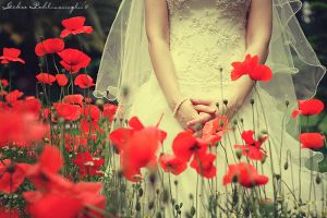 poppy bridal by Anahita