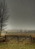 Autumns Pasture by HeatherWaller-Rivet