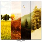 Seasons of Change by ArtistsForCharity