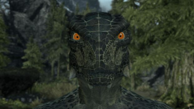 Argonian Male Facerig Character by Zefnoly