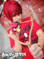 Fear the Bird! - Angry Birds Cosplay by Hikuja