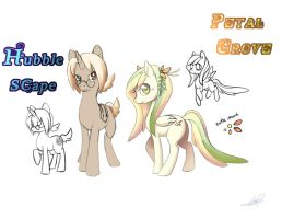 Hubble Scape and Petal Grove - Pony OCs by Lanmana