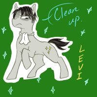 attack on titan : LEVI PONY by shsh123p