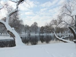 great winter by exit-humanity