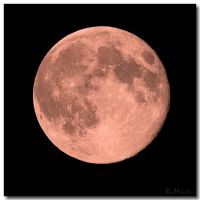 Harvest Moon by ricmerry