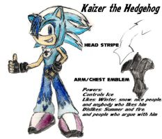 New char: Kaizer the Hedgehog by mnkywitagun