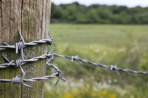 Barbed wire by ConnieUitsu