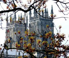 york minster 2 by shadowsandshades42