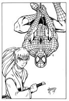 Kenshin and Spidey by Godsartist