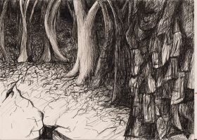 forest from imagination ink by aspiring-x