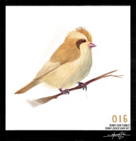 Pidgey! Pokemon One a Day! by BonnyJohn