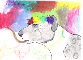 Aceo Trade: Young and Colorful by Pyronic-Tiger