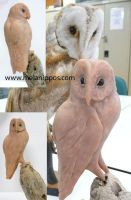 Owl sculpture by melanippos