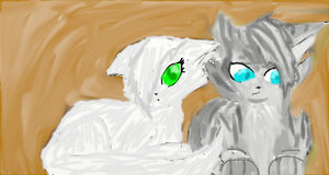 Jayfeather and Half Moon by Silver-Storm-Dragon