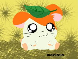 hamtaro by maduvaria