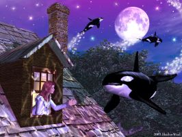 Orca Fantasies II: Moonlight Visit by shadowwind