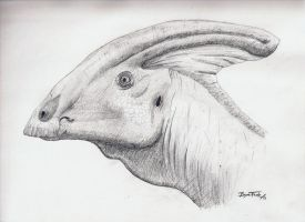 Parasaurolophus by DinoHunter000