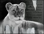 Lioness Decline by ArtofJefferyHebert