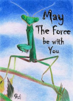 May the Force be with You by FaeryWing
