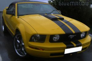 Yellow Cabrio Mustang by blueMALOU