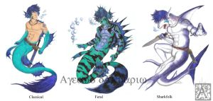 Ageaus Primary Forms Ref by Ageaus