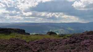 Cloudy Sky and Purple Heather by KirstenStar
