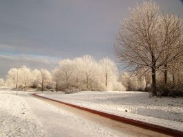 Winter in the Netherlands by dutchway
