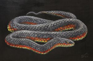 Copperhead painting by Snake-Artist