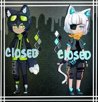 Adopts 16 [CLOSED] by Chows-adopts