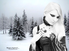 Winter... by morganablackmoon