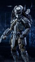 Predator by JPGraphic