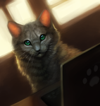 Cat and laptop by Happy--Cat