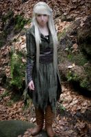 Mirkwood Elf 5 by Liancary-Stock