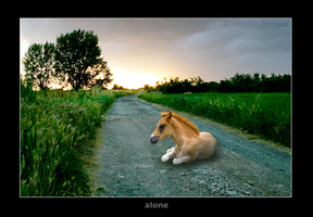 Alone by htmlxcoder