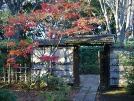 old house gate in japan by saTen0w0