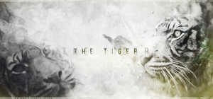 The Tiger by NINJAIWORKS