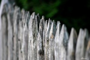 The Fences by DhxFoto